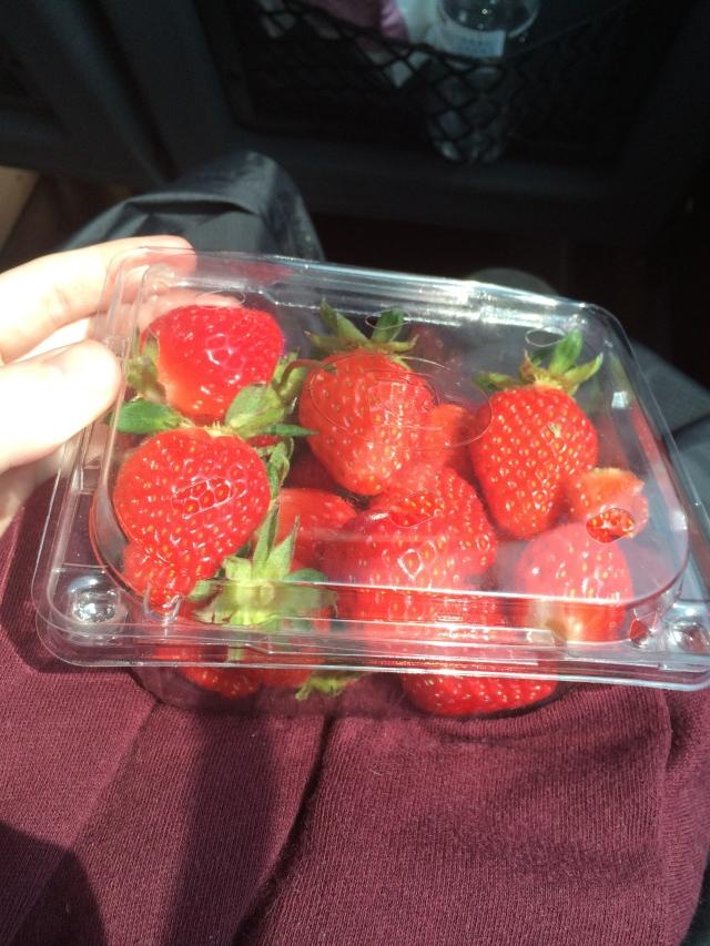 Free box of freshly picked strawberries