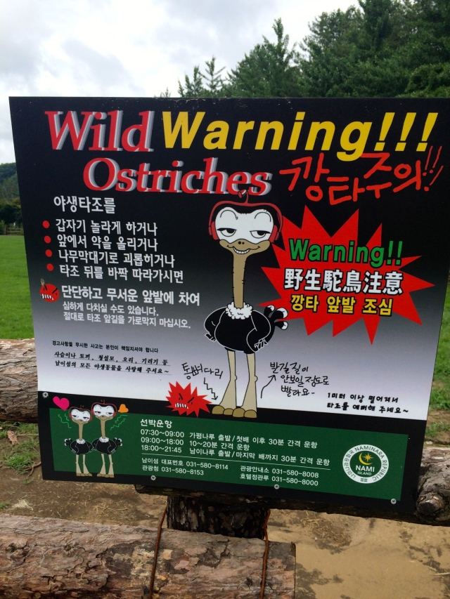 I didn't see any wild ostriches, but apparently they were out there somewhere